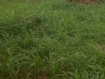 Land Measuring Approximately 650sqm, Oniru, Victoria Island (vi), Lagos, Mixed-use Land for Sale