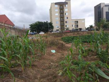 Wonderful Commercial Plot for Immediate Development, Directly Behind Oando Petrol Station, Opposite Prince and Princes Estate, Kaura, Abuja, Commercial Land for Sale