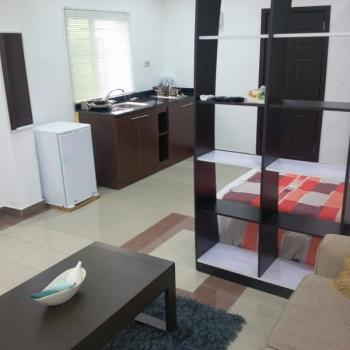 Exclusively Finished and Lightly Furnished Studio Apartment, 3rd Roundabout Close to The Meadow Hall School, Lekki Phase 1, Lekki, Lagos, Mini Flat for Sale