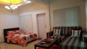Fully Serviced and Furnished Studio Apartment, Off Chevron Drive, Lekki Expressway, Lekki, Lagos, Mini Flat Short Let