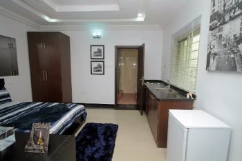 Spacious Studio Apartment- (show Flat), Strategically Close to The Lagos Business School, Ajah, Lagos, Mini Flat for Sale