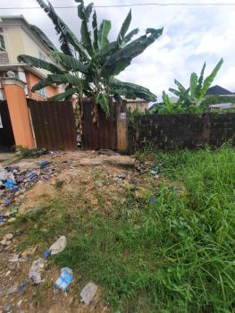 325sqm Gated Land, Ago Palace Way, Isolo, Lagos, Residential Land for Sale