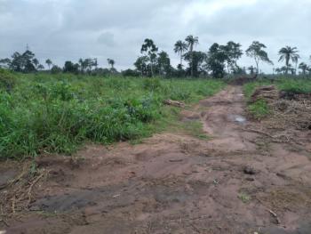 350 Plots of Land, Umuahia/aba Expressway,  Ubakala, Umuahia, Abia, Commercial Land for Sale