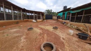 Poultry Farm Developed on 1,300sqm of Land, Close Adoration Junction, Emene, Enugu, Enugu, Mixed-use Land for Sale