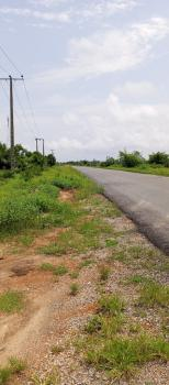 De Florence Estate, Otolu, Lekki Free Trade Zone, Lekki, Lagos, Residential Land for Sale