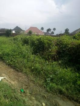 Well Located Plot of Land with Blocks, Off Old Airport Road, Rukpokwu, Port Harcourt, Rivers, Residential Land for Sale