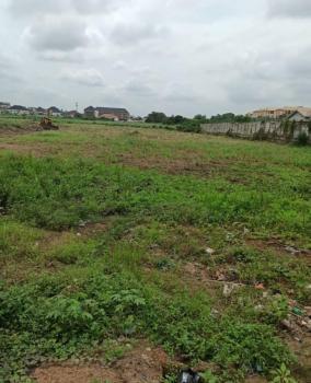 Plots of Land at The Heart, The Maverick Estate, Gbagada, Lagos, Mixed-use Land for Sale