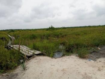 Investors Delight.... 60 Plots Ready for Grab, Igbo-ojiya Opp Beachwood Estate, Shapati, Ibeju Lekki, Lagos, Mixed-use Land for Sale