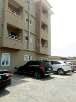 Spacious and Clean Miniflat, Igbo Efon, Lekki, Lagos, Mini Flat for Rent