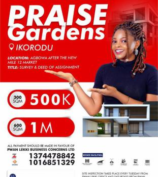 Plots of Lands, After The New Mile2 Market, Agbowa, Ikorodu, Lagos, Mixed-use Land for Sale