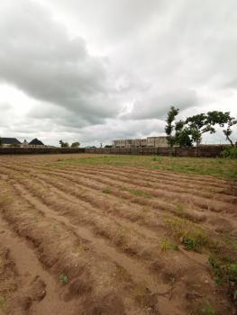 Residential Plot of Land in a Serene Neighbourhood, Jabi, Abuja, Residential Land for Sale