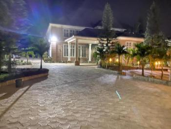 Ambassadorial 10 Bedroom Mansion, Greenery, Servant Qrts, Cctv, Asokoro District, Abuja, Detached Duplex for Rent