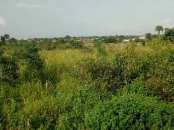 400 Acres of Land, Along Lagos Ibadan Expressway, Km 46, Ogun, Commercial Land for Sale