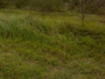 Commercial Land with C of O Sitting a Plot Away From The Expressway, Asaba, Delta, Commercial Land for Sale