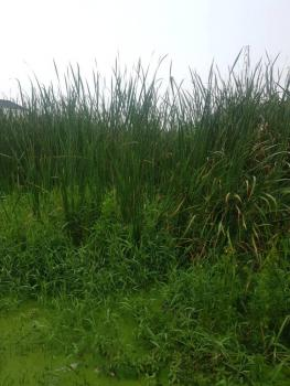 Full Plot of Land, Palm Crescent Estate Opposite Ap Station Badore, Ajah, Lagos, Mixed-use Land for Sale