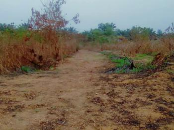 One Acre of Land (8 Plots), Along Ozuaha Amuaawa Trunk, Obio-akpor, Rivers, Mixed-use Land for Sale