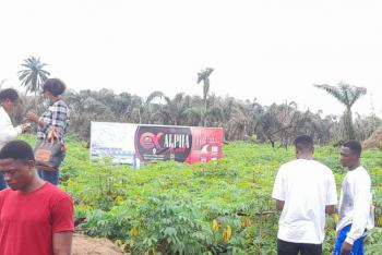Super Affordable Dry Land with Good Title in a Well Developed Area., Affordable Dry Land in Idi Iroko Community, Behind Lekki Free Zone, Lekki Free Trade Zone, Lekki, Lagos, Mixed-use Land for Sale