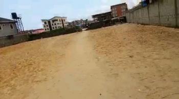 Prime Sandfilled Land, Ikate, Lekki, Lagos, Residential Land for Sale