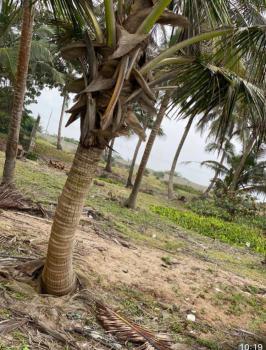 The Most Affordable Beach Front Land, Along Amen Estate, Eleko, Ibeju Lekki, Lagos, Commercial Land for Sale