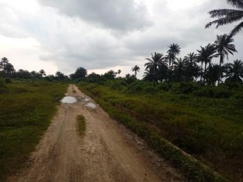 100 Plots of Land with C of O and Waterfront, Iwofe, Rumolumeni, Port Harcourt, Rivers, Commercial Land for Sale