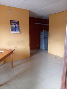 Spacious Mini-flat with Nice Facilities, Off College Road, Ogba, Ikeja, Lagos, Mini Flat for Rent
