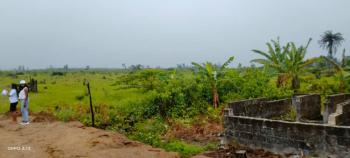 Hot Waterfront Land with Beautiful Facilities, Ikate Elegushi, Lekki, Lagos, Residential Land for Sale