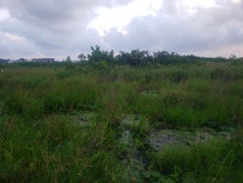 5,300sqm Land Available, Ligali Ayorinde, Victoria Island (vi), Lagos, Mixed-use Land Joint Venture