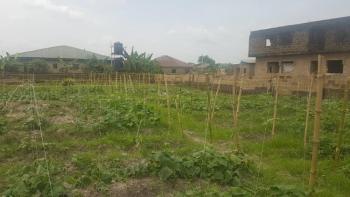 720 Sqm Corner Piece Land, Off Lion Power Road, Orimerunmu Village, Behind Nasfat By Total, Ibafo, Ogun, Residential Land for Sale