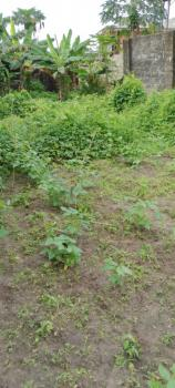 a Land Measuring 100 X 100 Feet  Fenced and Gated Close to The Express, Irene Town Junction, Ekiugbo, Ughelli North, Delta, Land for Sale