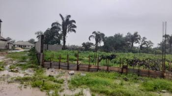 Fantastic Most Affordable Gazetted Land in a Beautiful Location, Palms Colony, Ibeju Lekki, Lagos, Mixed-use Land for Sale