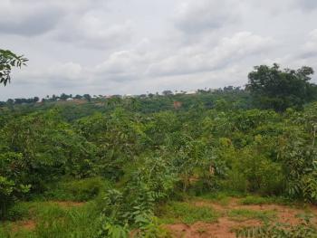 Two Plots of Flat Land, Anambra State Polytechnic Mgbakwu, Awka, Anambra, Mixed-use Land for Sale