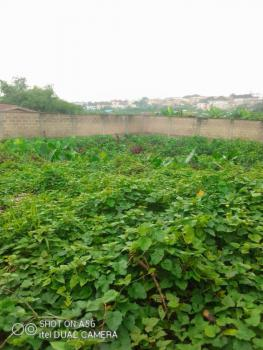 Nice Dried Full Plot of Land, Olowora Area, Omole Phase 2, Ikeja, Lagos, Residential Land for Sale