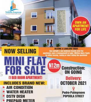 Ultra Modern Newly Built Mini Flat in a Serene Environment, Pedro Road, Palmgrove, Shomolu, Lagos, Mini Flat for Sale