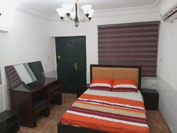 Executive 1 Bedroom Flat, Lekki Phase 1, Lekki, Lagos, Mini Flat Short Let