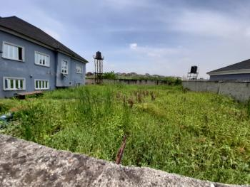 Well Fenced and Strategically Located 500sqm of Land, Soluyi, Gbagada, Lagos, Residential Land for Sale