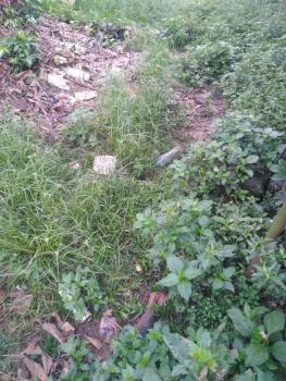 Deed of Conveyance, Omagwa (ph International Airport), Ikwerre, Rivers, Mixed-use Land for Sale