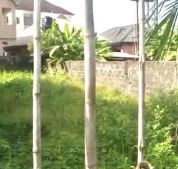 C of O Land on Interlocked Road, Goodnews Estate, Sangotedo, Ajah, Lagos, Land for Sale
