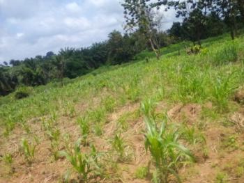 Acres of Land, Off Iseyin Road, Osioye, Ijaye, Moniya, Akinyele, Oyo, Mixed-use Land for Sale