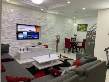 Modern 2 Bedroom Apartment, New Horizon 2, Ikate, Lekki, Lagos, Flat / Apartment Short Let