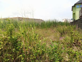 600 Square Meters Land, Peninsula Estate, Sangotedo, Ajah, Lagos, Residential Land for Sale