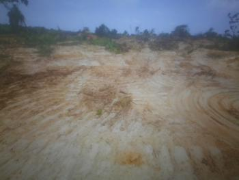 Affordable Land Available, Ait Road, Ikola Alagbado, Ipaja, Lagos, Mixed-use Land for Sale