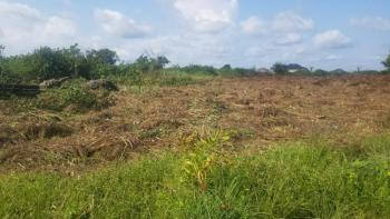 Residential Land with Artificial Lake with C of O, Kings Court Inside Beechwood Estate, Lakowe, Ibeju Lekki, Lagos, Residential Land for Sale
