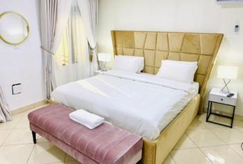 Tastefully Furnished 4 Bedroom Penthouse, Ikate, Lekki, Lagos, Detached Bungalow Short Let