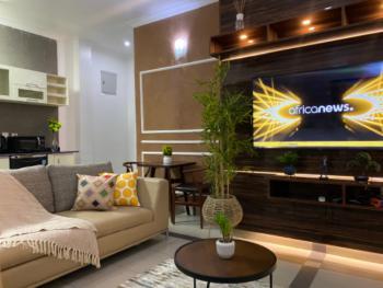 Exquisite One Bedroom Apartment, T Y Danjuma Street, Victoria Island (vi), Lagos, Mini Flat Short Let