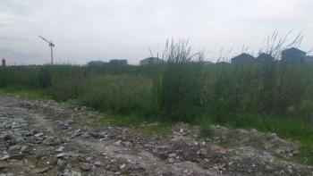 2700sqm Cbd Land, Freedom Way, Lekki Phase 1, Lekki, Lagos, Mixed-use Land for Sale