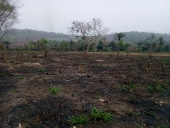 Over 200,000 Acre of Land, Ijebu Igbo, Ijebu North, Ogun, Mixed-use Land for Sale