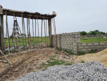 100% Dry C of O Land, Strategically Located  Close to The Major Road, Lekki Free Trade Zone, Lekki, Lagos, Mixed-use Land for Sale