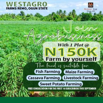 Westagro Farms, Remo North, Ogun, Commercial Land for Sale