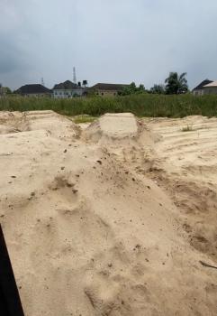 Joint Venture, Ogombo, Ajah, Lagos, Land Joint Venture
