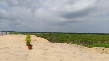 Fantastic Most Affordable Water Front C of O Plot of Land, The Lagoon Front Estate, Along Lekki-epe Express, Adjacent Alaro City, Ibeju Lekki, Lagos, Mixed-use Land for Sale